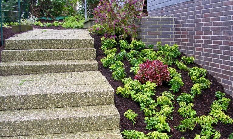 Gartenpflege und Bepflanzung